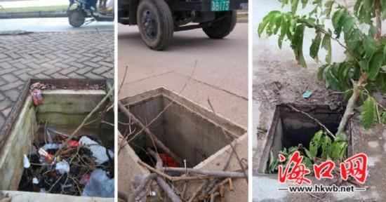 海口椰海大道近20井盖不知所踪 存安全隐患