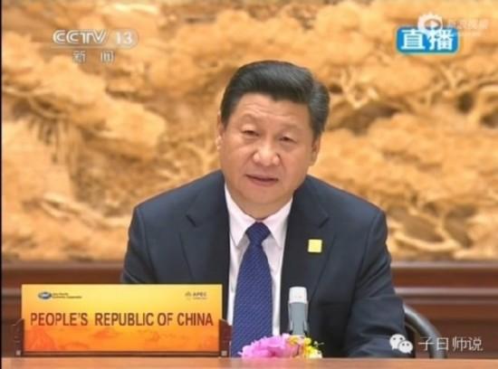 """中国之""""雁""""好诗意――习大大APEC讲话"""