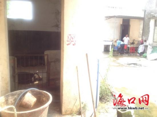 澄迈新吴中学食堂紧挨猪圈 学生:难以下咽