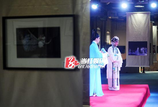 汪涵11月19日下午临时缺席影展开幕。