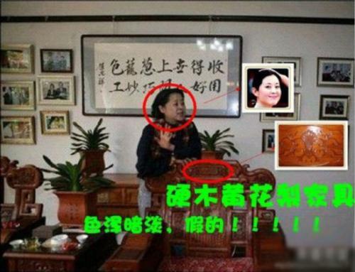 【图】曝赵忠祥5亿豪宅珍宝满屋 摄像头无数