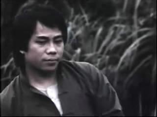 揭昔日武打明星现状:胡慧中17年后现身 刘家辉