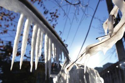 树枝上挂起长长的冰锥。