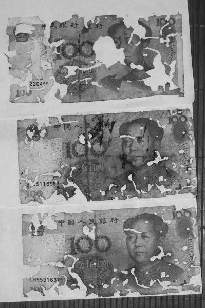 """男子海口打工积蓄全藏纸盒 万元钞票被""""啃"""""""