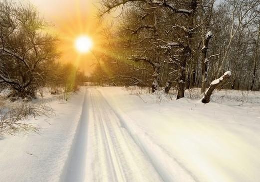 冬季饮食:冬季最该吃的防病食物