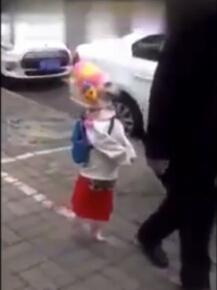 【环球网综合报道】据英国《镜报》12月13日报道,近日,中国某地一只宠物狗在街上直立行走的视频走红网络。镜头中,狗狗一身女装,神态悠闲地跟随主人在街上漫步,惹人喜爱。