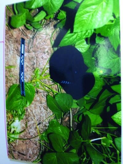 两男子敲诈后逃跑,遗落现场的电筒和鸭舌帽。 任国勇 翻拍