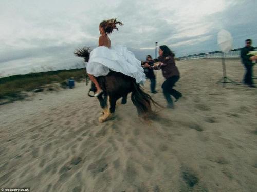 新娘拍婚纱照骑马摆造型意外摔马吃一嘴沙(图)