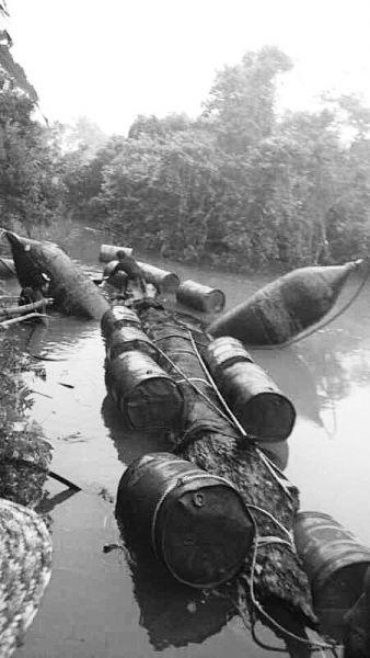"""村民河里摸鱼发现巨大""""奇木"""" 或是千年乌木"""