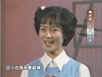 谁还没个青春 央视十大主持人首次出镜青涩照