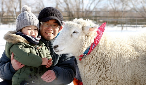 """喜迎羊年日本举行与""""微笑羊""""合影活动(图)"""