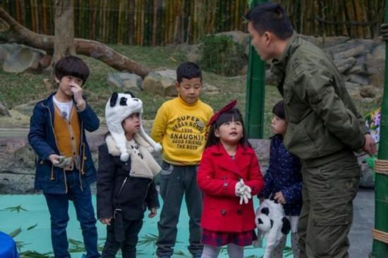 10周岁以下孩子不得做代言人 王诗龄森蝶被禁代言