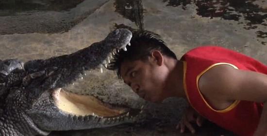 动物园艺人用生命在表演!将头伸入巨鳄血盆大口
