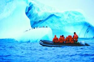 专家:南极游游客数量增多或严重威胁企鹅健康