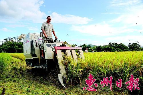 今年2月底,市政府公布了2014年要重點完成的10件民生實事。其中,新增5個項目的政策性涉農保險是其中一項重要內容。此次新納入政策性農業保險的項目,具體為馬鈴薯、玉米、花生、甘蔗和奶牛。從事上述農作物種植的農戶、家庭農場、合作社和農業企業都可以參保,個人也可以集體名義參保。此舉在一定程度上降低了農民在災害天氣時的經濟損失,對保障農業生產意義重大。