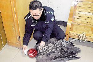 民警给秃鹫喂食