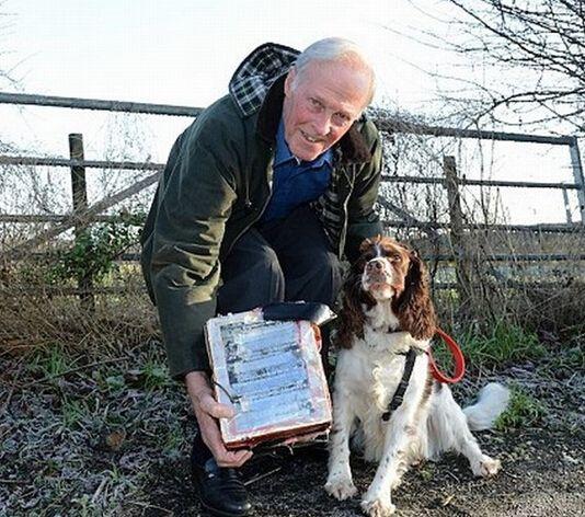 英国宠物犬捡到钻石