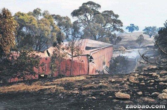 澳南部现30年来最严重林火民宅被毁数千家畜死亡