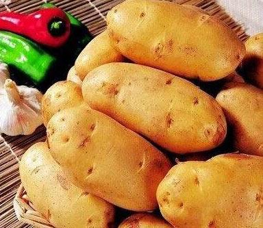 土豆翻身当主粮 好处这么多