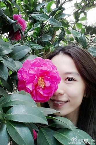 田馥甄晒与茶花合影皮肤白皙面带微笑(图)