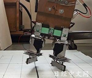 """日本研发""""会玩轮滑""""机器人将用于警备工作(图)"""