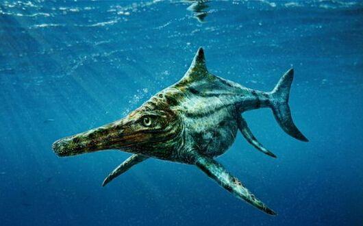 苏格兰发现史前巨型爬行动物:像海豚又像鳄鱼(图)