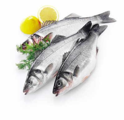 鱼头汞含量最高 鱼哪个部位重金属多?