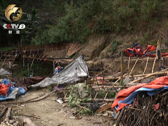 盜採者用竹片塑料布木條支起的簡易帳篷