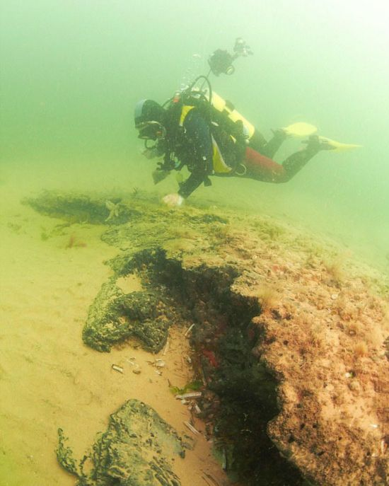 北海海底发现1万年前远古树林 生长于冰河世纪