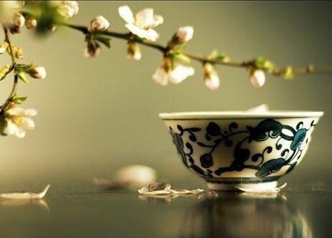 早上9点一杯花茶