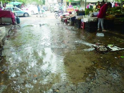 市民称便民疏导点地下排水管破裂没人修补