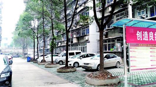 市民盼解决老旧小区停车难 代表委员呼吁修生态停车场