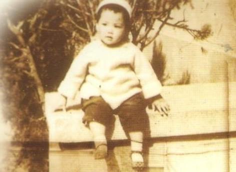 王菲 王菲童年照 王菲素颜 王菲学生照