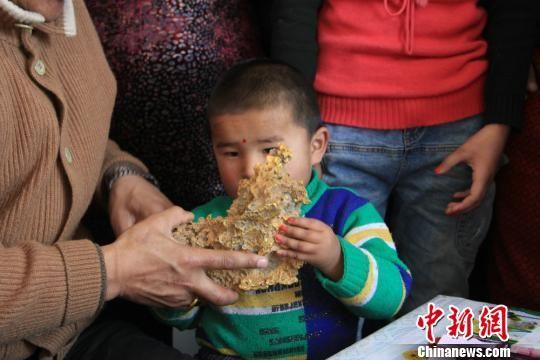 新疆青河县一牧民上周意外捡到重7.85公斤公斤左右的一块狗头黄金,这块黄金酷似中国地图。 朱新峰 摄