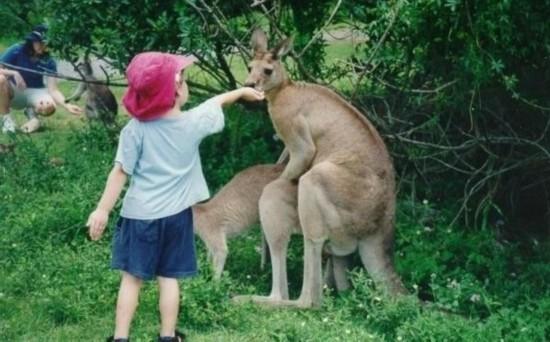 国外孩童与动物图片