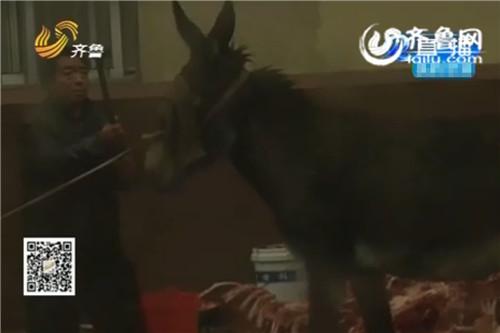 店主街头杀驴。(视频截图)