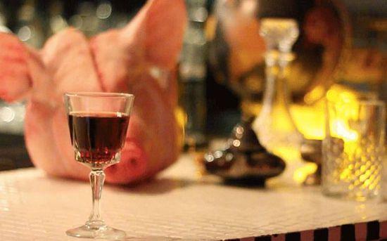 奇葩!英酒吧推出添加猪血新款鸡尾酒