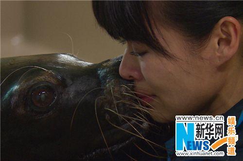 《奇妙》海洋馆离别大催泪 胡杏儿与海狮双双泪奔