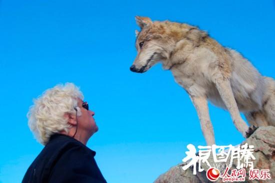导演与道具狼对视