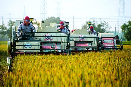 推进农村一二三产业融合发展新题应有新解法