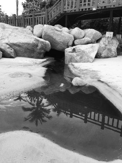 陵水一楼盘向大海直排污水 开发商说是雨水
