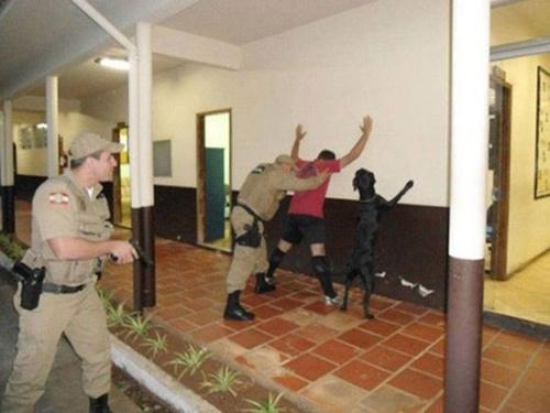主人被警察搜身忠犬也摆同一姿势不离不弃(图)