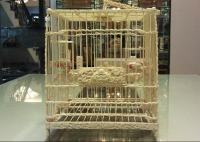 80后小伙10年收藏数十张鸟笼 最好鸟笼可换辆宝马