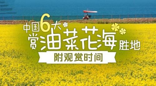 花都开好了 中国六大赏油菜花海胜地盘点