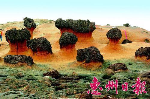 台湾野柳地质公园风光。 本报采集