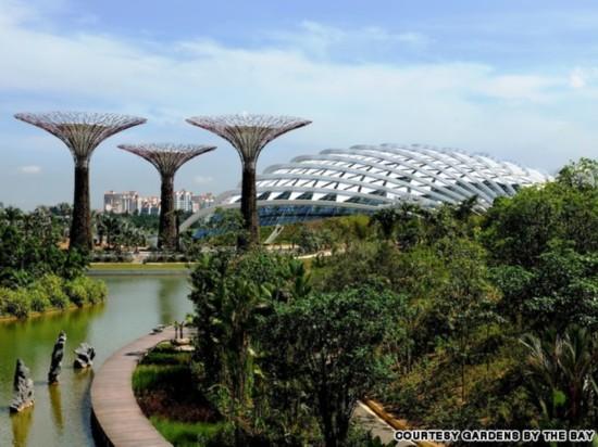 滨海湾花园 新加坡花园中的科技之最