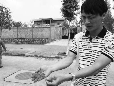 """村民反映人造板厂污染严重 有村民患""""怪病"""""""