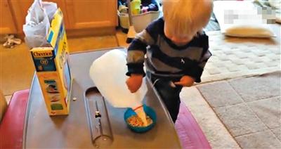 美国一岁半小男孩独自穿衣洗澡扔垃圾视频走红