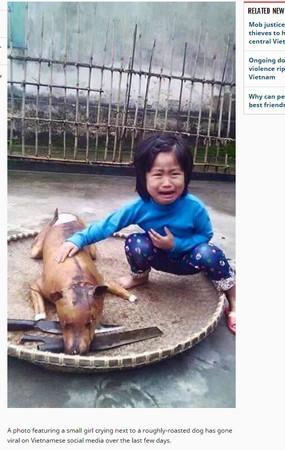 """越南女童爱犬走失,几日后在狗肉摊看到,一眼认出痛喊""""那是花花"""""""