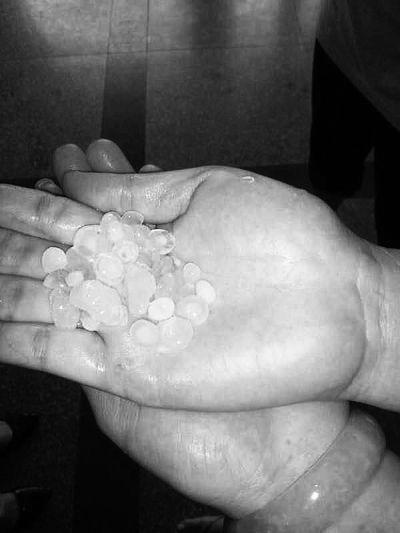 儋州降冰雹持续5分钟 最大颗粒直径达8毫米